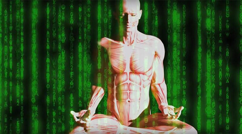 Meditando Matrix